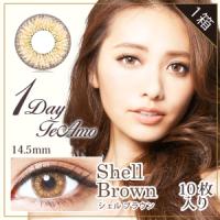 1day TeAmo Shell Brown