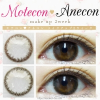 Motecon・Anecon make-up 2week