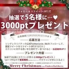 【シンデレラリバティ】クリスマスプレゼントキャンペーン!
